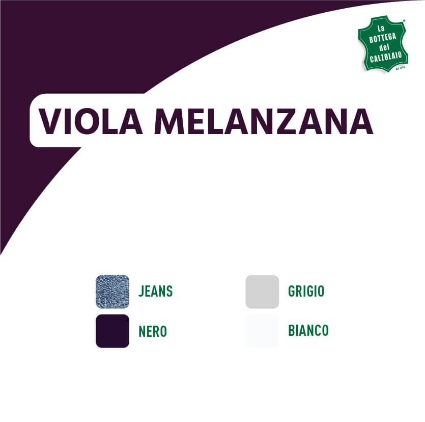 Abbinamento colori viola melanzana